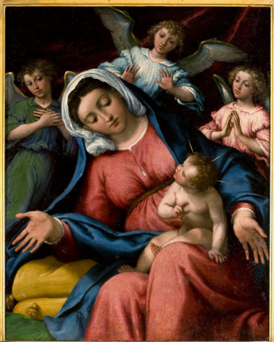 Lorenzo Lotto Madonna delle Grazie, 1542-46 cm Tavola, 39x32 cm San Pietroburgo, Museo Statale Ermitage